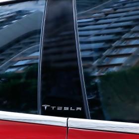 Металлостикеры на стойки дверей Тесла